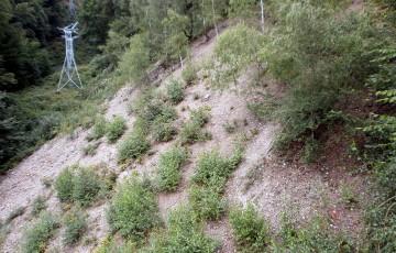 Důlní revír Knötel